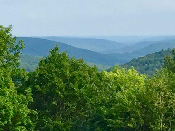 Dennis Hill view