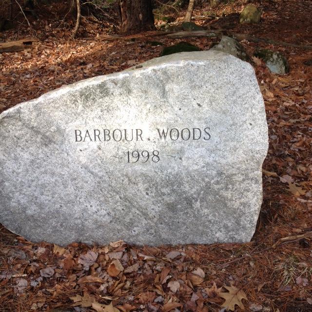 Barbour Woods Norfolk, CT