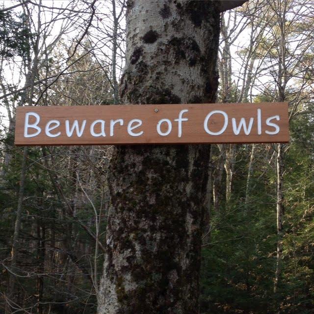 Beware of Owls