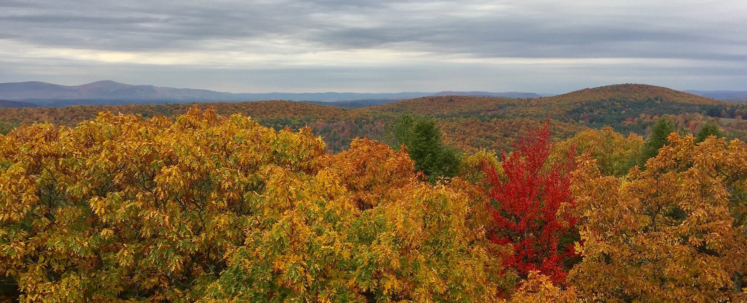 The 3 Best Places To View Fall Foliage In Norfolk Ct