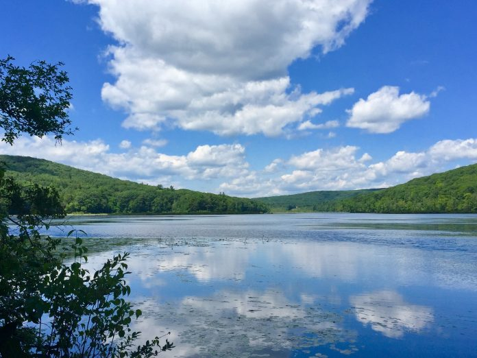 Wood Creek Pond
